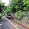 渡良瀬渓流鉄道サイクリング