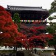 京都の秋 ~ 金戒光明寺の紅葉