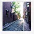 Ⅴ ボストン ⑥ ビーコン・ヒル、 エイコーン・ストリート、ボストン・コモン、フリーダム・ トレイル~ぼくのアメリカ~ My U S A Boston