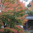 見事な紅葉に包まれた滋賀県多賀町の古刹「高源寺」。村山たか女ゆかりの寺