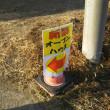 1/19*お散歩へレッツゴー☆