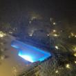 越前 水仙とカニと大雪と(5)