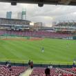 初めてのプロ野球観戦