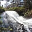 秋田県小坂町にある七滝はとても美しい所でした