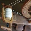 エジプト綿を紡いだ。