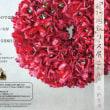5月1日花冠と舞とベジカフェ@秩父