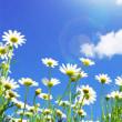 新たな霊言の開示「死後成仏法(現象)」 ◆故人が地上を彷徨っているたった一つの理由とは?◆葬儀の様子は、どのように見えているのか?