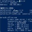 Office365 DNS各種確認