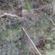 鹿ネット修理