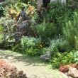 庭を楽しみながらのランチ