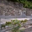 沼間古い墓新しい墓