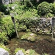 滋賀県の川へ!