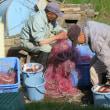 漁夫の仕事
