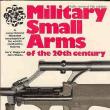 20世紀的小銃