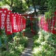 2017/08/09井伊直虎と井伊谷を訪ねる。