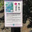 川場村散歩 梅雨の晴れ間