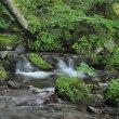 ★谷川の流れと緑と花で英気を養う 2018
