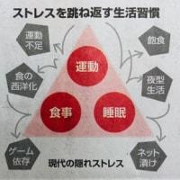14.木/スポーツの力