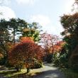 箱根蓬莱園の紅葉