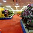 慶運館のさつき盆栽展