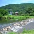 爽やかな川の流れ