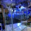 中古700×250×600オールガラス水槽