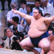 9月18日(火)夕方walking & 御嶽海