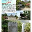 花巡り 「サツキ-38」 正福寺