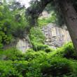 山寺やこころにつづく夏の旅