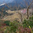 名残の紅葉と山また山の眺め、後古光山へ