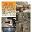 散策 「商店街-377」 GINZA SIX➀