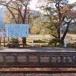 紅葉を見に会津鉄道に乗りました。11月3日