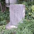 倭から日本、大和へと語り継がれた「ヤマト」