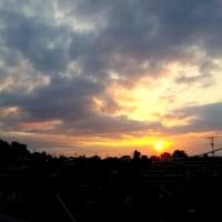 今朝の陽光