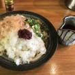 田りた麺乃助-梅鬼おろし大根うどん