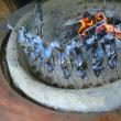 苗名滝で魚焼いて。。