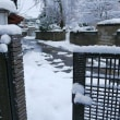 今日で4日目降雪「新設10cm」。