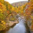 「定山渓温泉」の黄葉を撮りました !