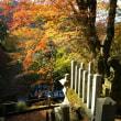 青倉神社の紅葉