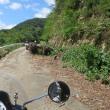 湖北の景色を堪能  ~ 箱館山スキー場をぐるっと回ってきました ~