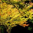 秋の気配1