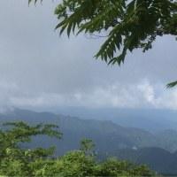 高尾山に登る