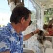 ギリシャ 美しい島 アスティパレア島 5 ネコ天国