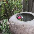 京都 虎屋菓寮