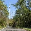 佐田岬の風車