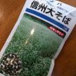 蕎麦の花畑