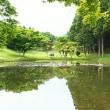 日中は眠気一杯でゴルフ、そして夜はバタバタの接客…(^^;)(;^^)
