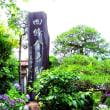 鎌倉「四条山収玄寺」は今、あじさいに彩られて・・!!
