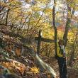 野ねずみ山日記 日子の山萌える -秋の裏英彦山-