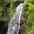 大岳山滝巡り登山